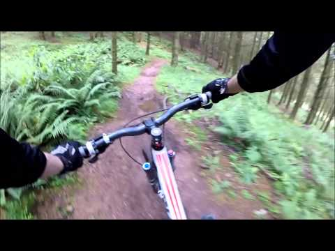 Triscombe Downhill Trails