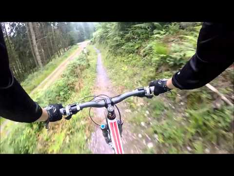 Haldon forest , end of red trail and black trail
