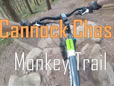 Cannock Chase - Monkey trail