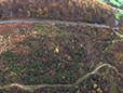 Stainburn Forest - Aerial View