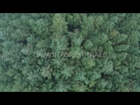 Davagh Forest Trails from the Air