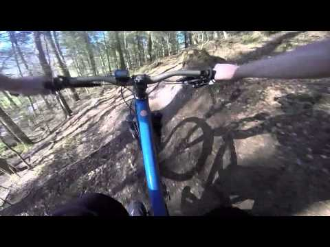 Angus' Summer GoPro series - Haldon Forest | Broken Ribs on Tower Wood.