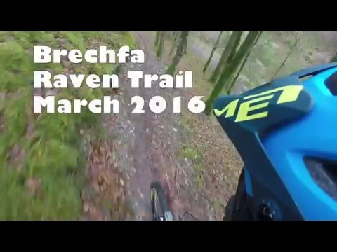 Brechfa Raven Trail -  March 2016