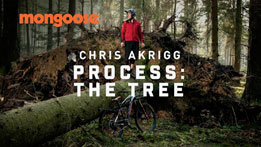 Chris Akrigg Process: The Tree