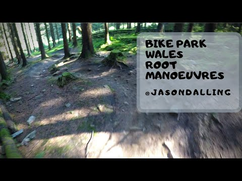 POV - BIKE PARK WALES - ROOT MANOEUVRES