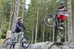 New Trails Open at Coed-y-Brenin Forest Park