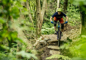 Mountain Bike Trails Planned For Gortin Glen Forest