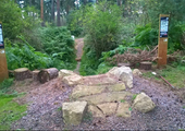 New 'Bracken Pit' Trail Section opened at Thetford Forest