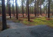 Thetford Forest Pumptrack Reopened