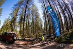 Brand new trail section at Cannock Chase!