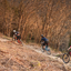 Forestry Commission survey into mountain biking