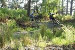 New Freeride mountain bike trail opens in Falkirk