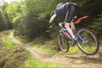 Event seeks feedback on Glentress mountain bike trails