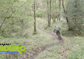 PMBA ENDURO SERIES, Round 5 - Grizedale Forest