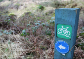 Coed Trallwm Mountain Bike Trail Centre To Close