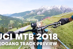 Red Bull's Track Preview with Loïc Bruni at Leogang World Cup DH 2018