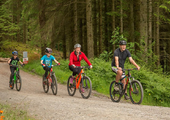 New cycle trail now open in Whinlatter Forest