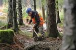 Bike Park Wales Begins Development On First Uplifted Green Trail
