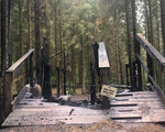 Wind Hill Bike Park Hit By Suspected Arson Attack