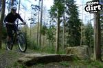 The Loop Trail - Hamsterley Forest Pictures