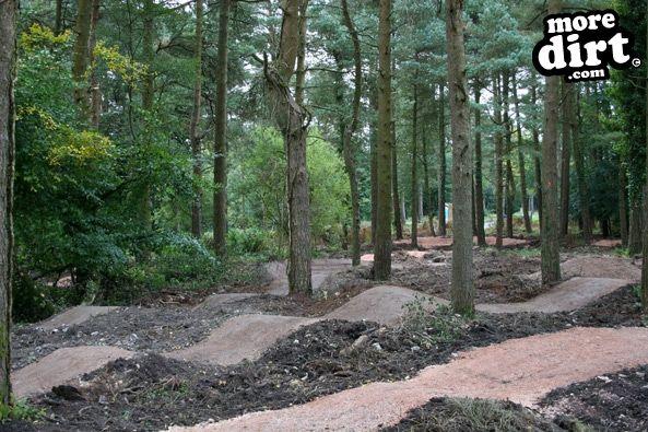Mtb Photos Haldon Forest Skills Area Amp Pump Track 49908