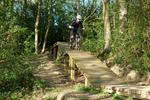Chopwell Woods Mountain Bike Trails Pictures