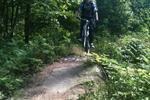 Adventure Cycle Trail - Sherwood Pines Pictures