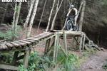 Norwood Edge Trail - Stainburn Forest Pictures