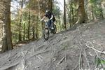 Downhill Trails - Forest of Dean Pictures