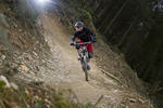 Cardinham Woods Mountain Bike Trails Pictures