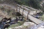 Whites Level Trail - Afan Forest Pictures
