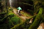 Ticknock Mountain Biking Trails Pictures