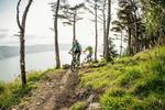 Rostrevor Mountain Bike Trails Pictures