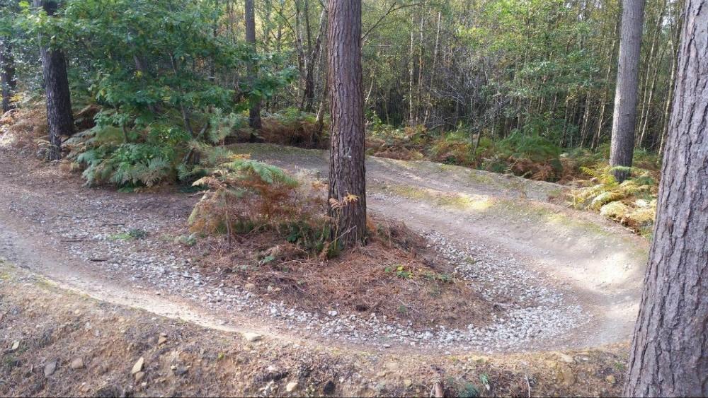 Bedgebury Forest Mountain Bike Trails Mountain Bike