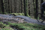 Kielder Mountain Bike Trail Centre Pictures