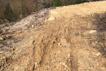 Dalby Forest Mountain Bike Trail Centre Pictures