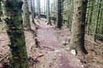 Nant Gwrtheyrn DH Mountain Bike Trails Pictures