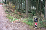 Haldon Forest Mountain Bike Trail Centre Pictures