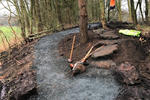 Lochore Meadows Mountain Bike Trails Pictures