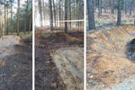 Swinley Forest Mountain Bike Centre Pictures