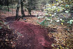 Hemlock Stone Mountain Bike trails Pictures
