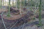 Stainburn Forest Mountain Bike Trail Centre Pictures