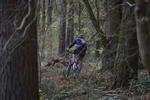 Dudmaston Wood Mountain Bike Trails Pictures