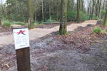 Moors Valley Country Park in Dorset are currently giving the single track through the woods a bit of TLC. Sections 8 to 12 are being re-surfaced to make for a much smoother ride with the plan to being back open by half term.