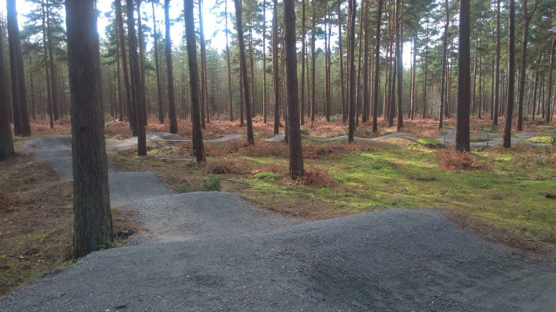 Thetford Forest Pumptrack