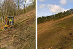 Cwmcarn Mountain Bike Trail Centre Pictures