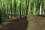 New red graded trail opening soon at Wind Hill B1kepark!