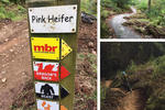 Coed y Brenin Mountain Bike Trail Centre Pictures
