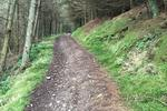 Innerleithen Mountain Bike Trails Pictures