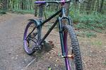 Sherwood Pines Bike Park Pictures